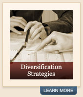 Financial Diversification Strategies